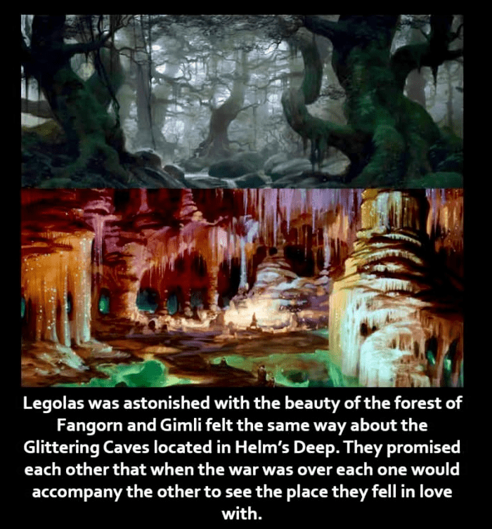 Formation - Legolas was astonished with the beauty of the forest of Fangorn and Gimli felt the same way about the Glittering Caves located in Helm's Deep. They promised each other that when the war was over each one would accompany the other to see the place they fell in love with.