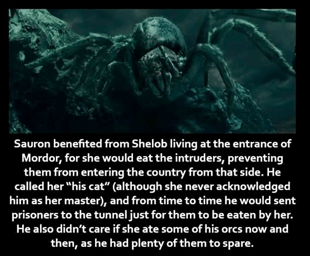 """Organism - Sauron benefited from Shelob living at the entrance of Mordor, for she would eat the intruders, preventing them from entering the country from that side. He called her """"his cat"""" (although she never acknowledged him as her master), and from time to time he would sent prisoners to the tunnel just for them to be eaten by her. He also didn't care if she ate some of his orcs now and then, as he had plenty of them to spare."""