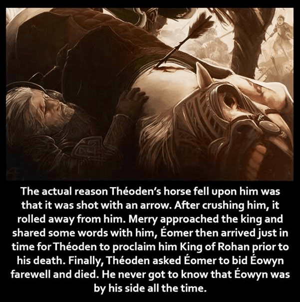 Text - The actual reason Théoden's horse fell upon him was that it was shot with an arrow. After crushing him, it rolled away from him. Merry approached the king and shared some words with him, Éomerthen arrived just in time for Théoden to proclaim him King of Rohan prior to his death. Finally, Théoden asked Éomer to bid Éowyn farewell and died. He never got to know that Éowyn was by his side all the time.