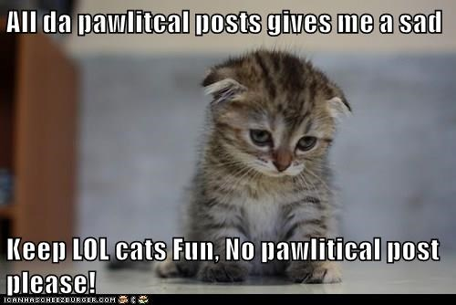 Funny cat meme of a kitten lamenting that the whole internet has become political and we need more lolcats to make onlines great again.