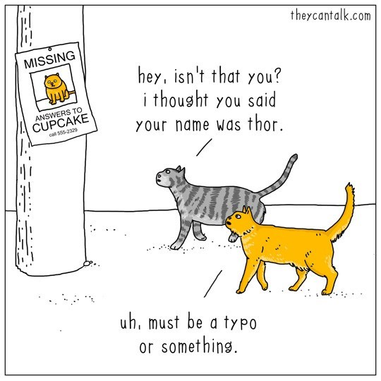 Cartoon - theycantalk.com MISSING hey, isn't that you? i thought you said ANSWERS TO CUPCAKE call $55-2329 YOur name Wds thor. uh, must be a typo or something