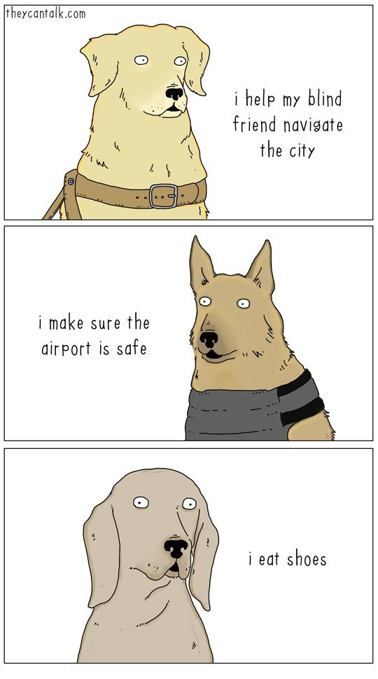 Canidae - theycantalk.com i help my blind friend navigate the city i make sure the air port is safe i eat shoes
