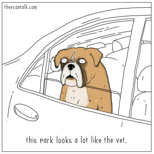 Dog - theycantalk.com i this Park looks a lot like the vet.