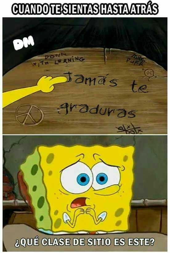 bromas Memes