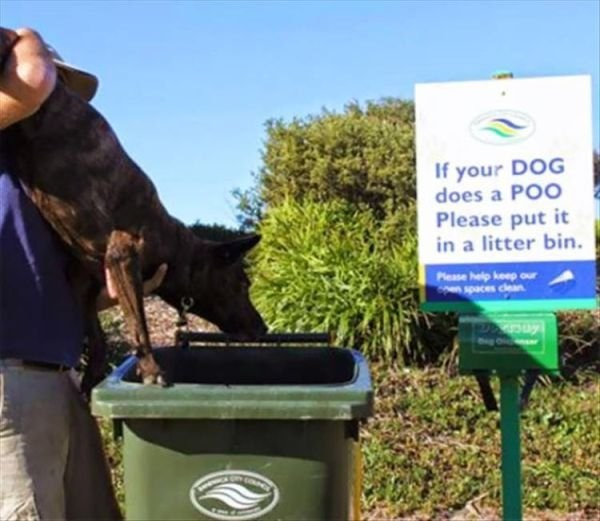 Soil - If your DOG does a POO Please put it in a litter bin. Please help keep our spaces clean