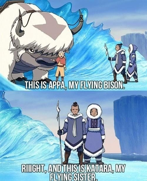Cartoon - THIS IS APPA, MY FLYING BISON RIGHT, AND THISISKATARA, MY FLYING SISTER