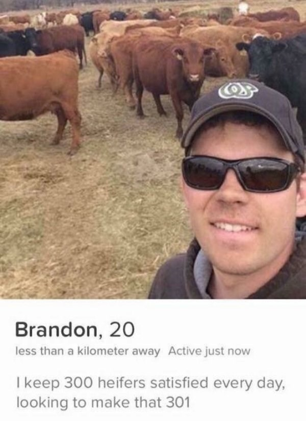 guy taking selfie in front of cows - Brandon, 20 less than a kilometer away Active just now I keep 300 heifers satisfied every day, looking to make that 301
