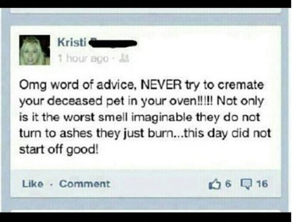 Text - Kristi 1 hour ago- Omg word of advice, NEVER try to cremate your deceased pet in your oven!!!! Not only is it the worst smell imaginable they do not turn to ashes they just burn...this day did not start off good! 616 Like Comment