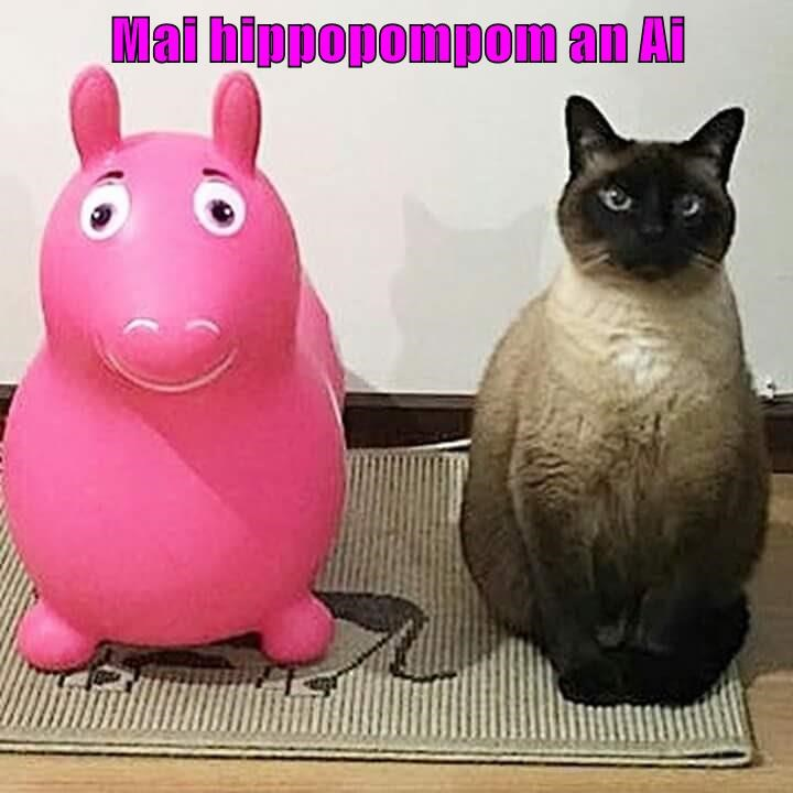 cat caption hippopotamus mom - 9013534464