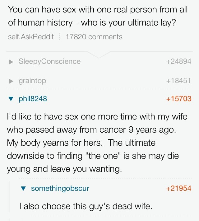 """dank meme - Text - You can have sex with one real person from all of human history - who is your ultimate lay? self.AskReddit 17820 comments SleepyConscience +24894 +18451 graintop +15703 phil8248 I'd like to have sex one more time with my wife who passed away from cancer 9 years ago. My body yearns for hers. The ultimate downside to finding """"the one"""" is she may die young and leave you wanting. somethingobscur +21954 I also choose this guy's dead wife."""