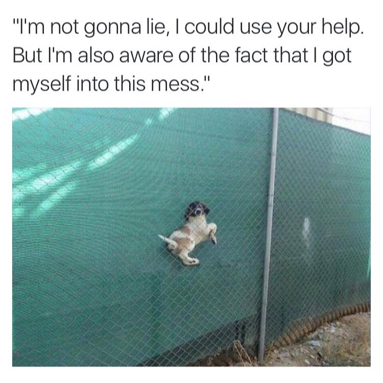 """Text - """"I'm not gonna lie, I could use your help. But I'm also aware of the fact that I got myself into this mess."""""""