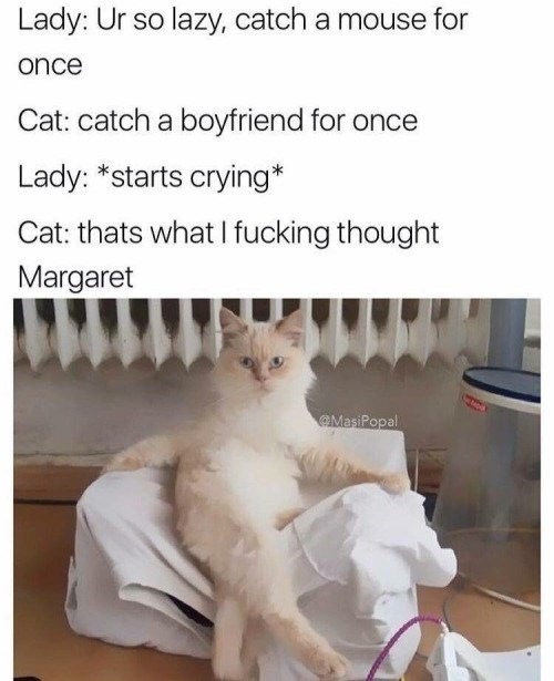 Cat - Lady: Ur so lazy, catch a mouse for once Cat: catch a boyfriend for once Lady: *starts crying* Cat: thats what fucking thought Margaret MasiPopal