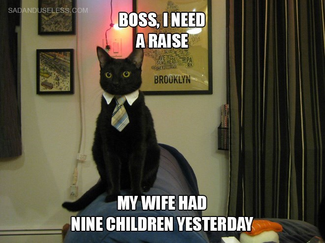 funny meme of a business cat asking for a raise.