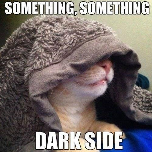 Something, Something, Darkside - funny cat meme of kitty with blanket on his head.