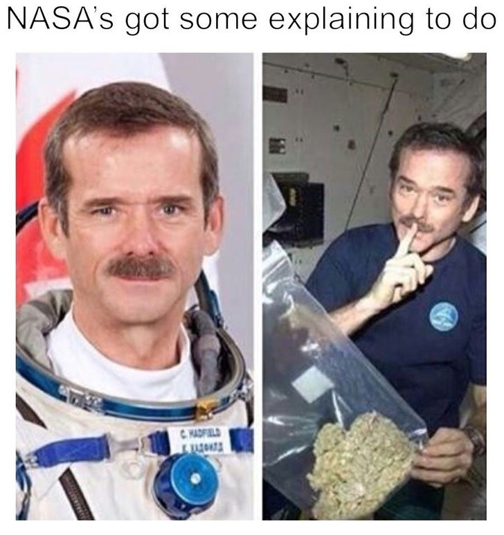 Pic of NASA astronaut in space with a bag of weed