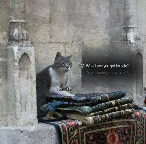 Pic of a cat sitting by a pile of rugs with interaction bubbles that make it look like a vendor in an RPG