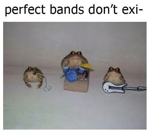 Meme about the perfect band being three frogs with miniature instruments