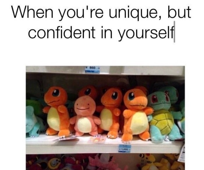 happy meme of a stuffed animal on a shelf that looks different than the other stuffed animals