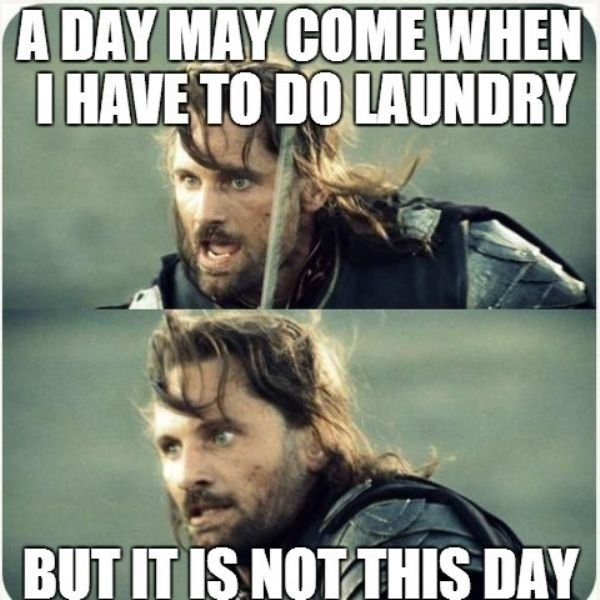 Photo caption - A DAY MAY COME WHEN IHAVE TO DO LAUNDRY BUT IT IS NOT THIS DAY