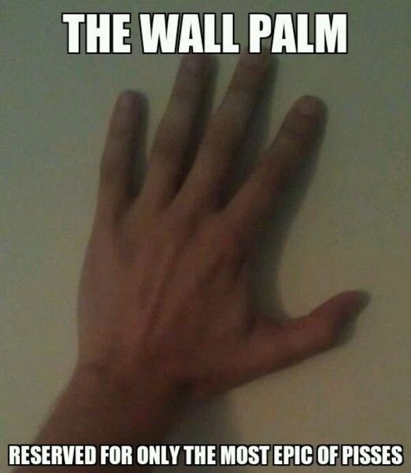 Finger - THE WALL PALM RESERVED FOR ONLY THE MOST EPIC OF PISSES