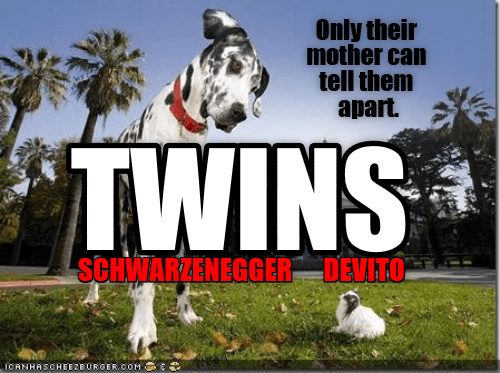Cheezburger Image 9014254592