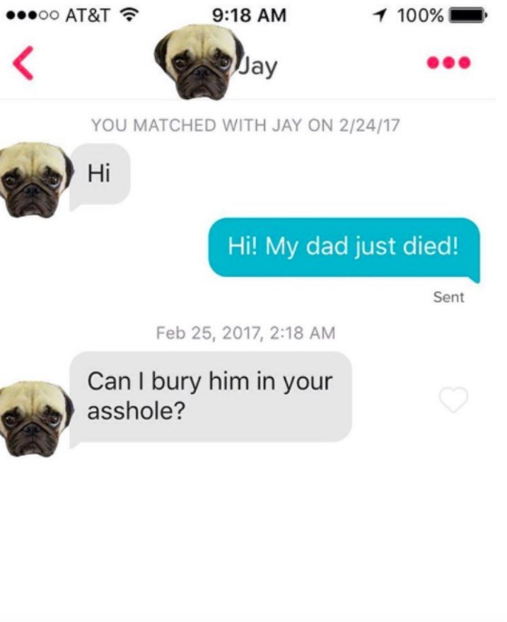 Head - 9:18 AM 1 100% eoo AT&T Jay YOU MATCHED WITH JAY ON 2/24/17 Hi Hi! My dad just died! Sent Feb 25, 2017, 2:18 AM Can I bury him in your asshole?