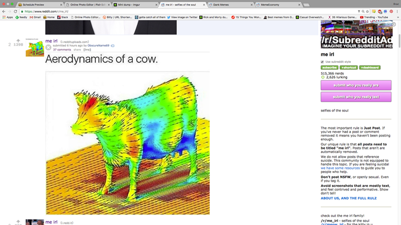 screenshot of engineer meme about cow aerodynamics