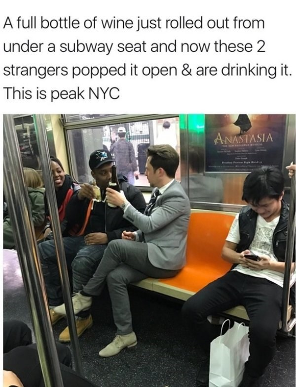 wholesome meme - Transport - A full bottle of wine just rolled out from under a subway seat and now these 2 strangers popped it open & are driinking it. This is peak NYC ANASTASIA