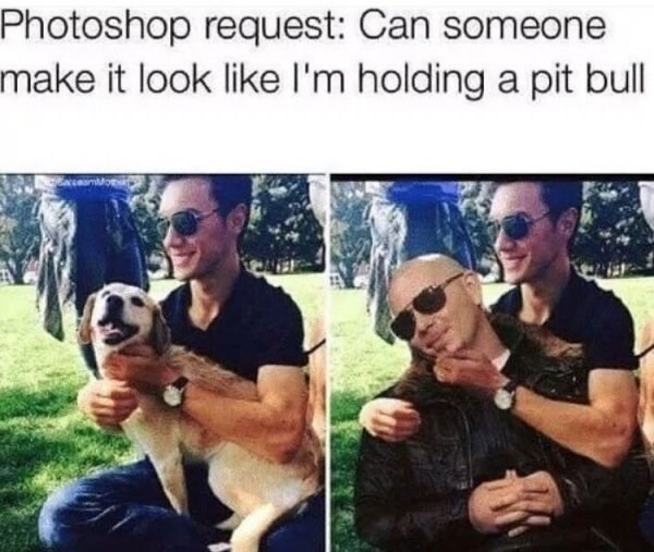 wholesome meme - Dog - Photoshop request: Can someone make it look like I'm holding a pit bull