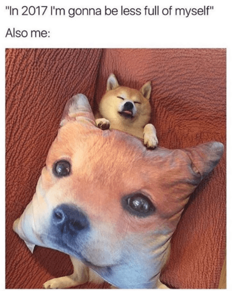 """meme - Dog - """"In 2017 I'm gonna be less full of myself"""" Also me:"""