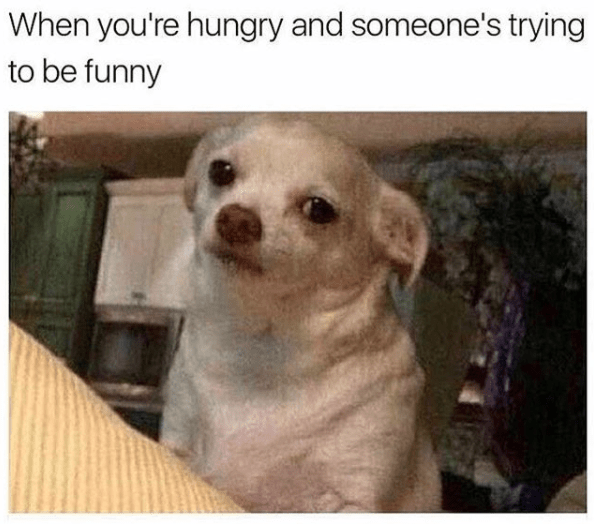 meme - Vertebrate - When you're hungry and someone's trying to be funny