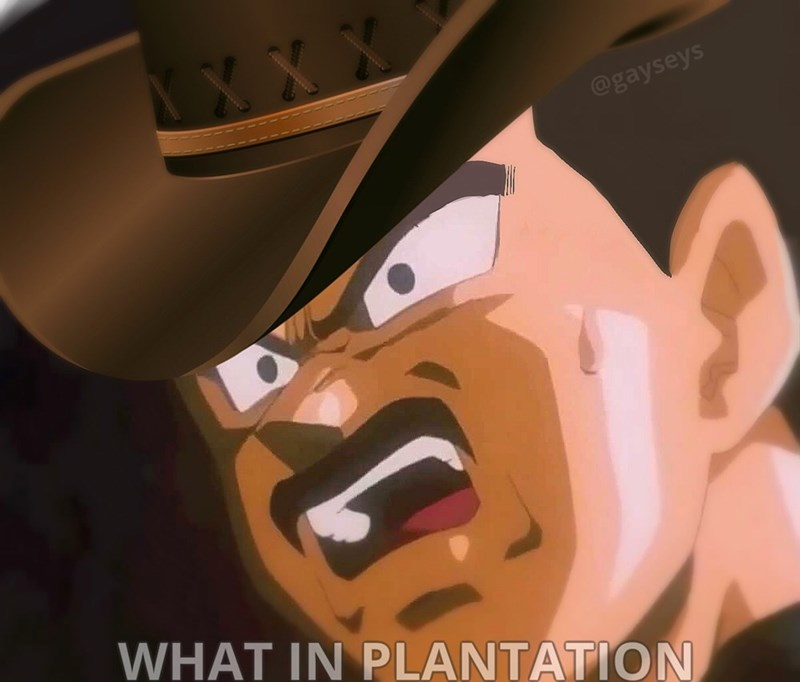 wot in tarnation,Dragon Ball Z,Memes