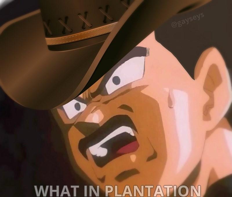 wot in tarnation Dragon Ball Z Memes - 9014774784