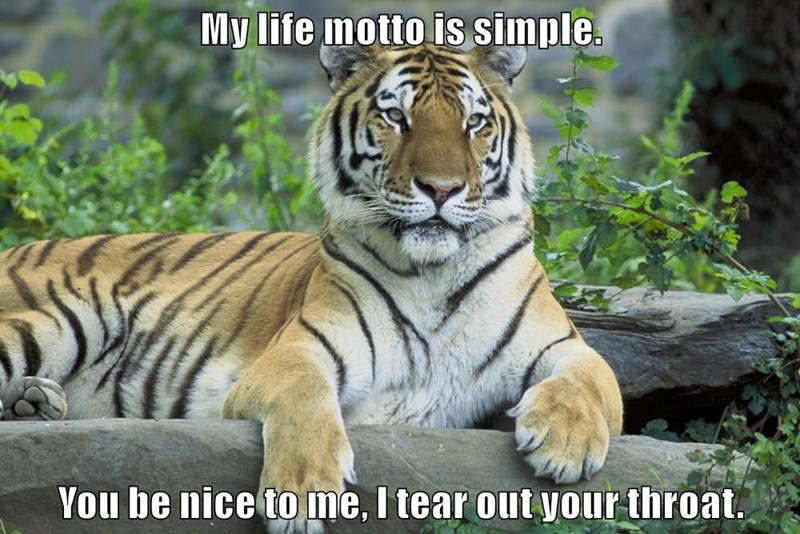 caption nice motto life tear throat tiger - 9014799360
