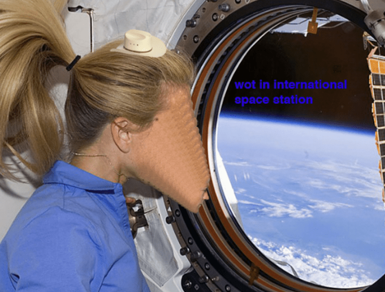 """dank meme with astronaut inside the International Space Station wearing a cowboy hat and asking """"what in tarnation"""""""