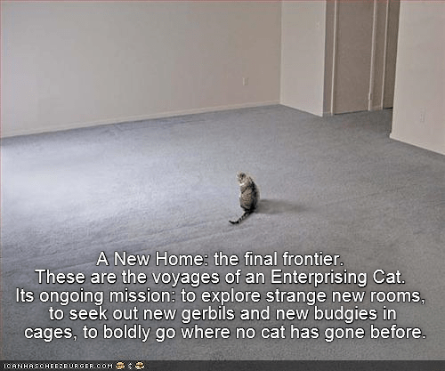 cat caption frontier home final new Star Trek