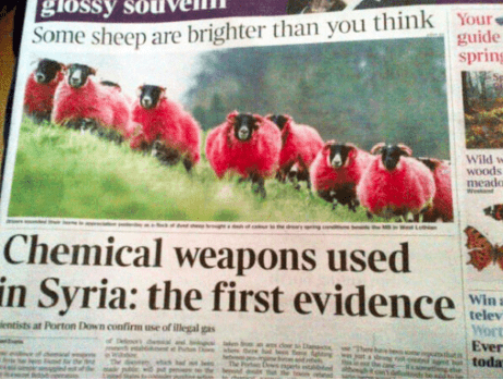 Advertising - Some sheep are brighter than you think Yours guide spring Wild w WOods пeado Chemical weapons used in Syria: the first evidence Win a telev Wort Ever toda entists at Porton Down confirm use of illegal gas of de