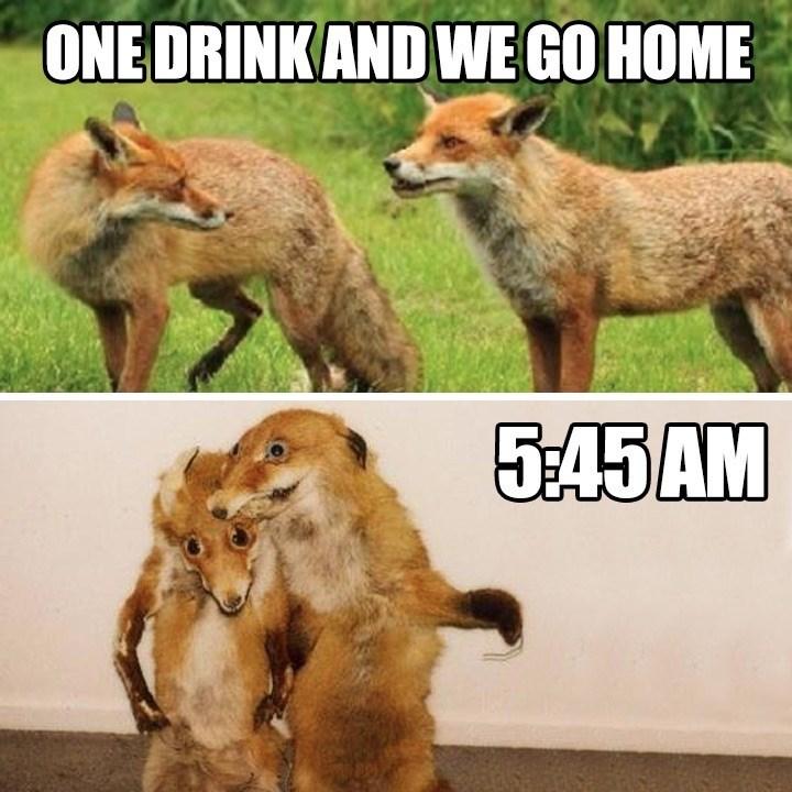 Vertebrate - ONE DRINKAND WE GO HOME 5:45AM