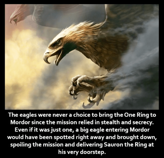 Bird of prey - The eagles were never a choice to bring the One Ring to Mordor since the mission relied in stealth and secrecy. Even if it was just one, a big eagle entering Mordor would have been spotted right away and brought down, spoiling the mission and delivering Sauron the Ring at his very doorstep.