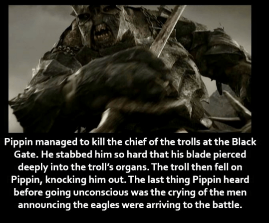 Text - Pippin managed to kill the chief of the trolls at the Black Gate. He stabbed him so hard that his blade pierced deeply into the troll's organs. The troll then fell on Pippin, knocking him out. The last thing Pippin heard before going unconscious was the crying of the men announcing the eagles were arriving to the battle.