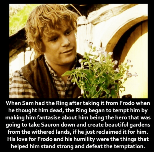 Photo caption - When Sam had the Ring after taking it from Frodo when he thought him dead, the Ring began to tempt him by making him fantasise about him being the hero that was going to take Sauron down and create beautiful gardens from the withered lands, if he just reclaimed it for him. His love for Frodo and his humility were the things that helped him stand strong and defeat the temptation.