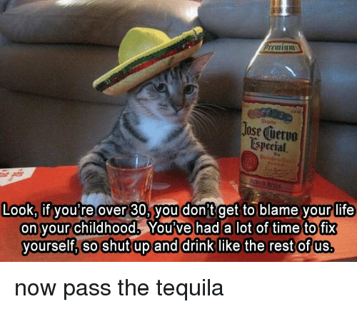 Cat - Premium Jose Cuervo Especial Look, if you're over 30, you don't get to blame your life on your childhood. You ve had a lot of time to fix yourself, so shutup and drink like the rest of us. now pass the tequila