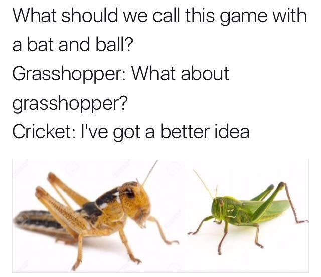 bill and phil me_irl - 9015616768
