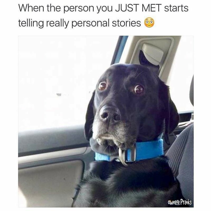 Dog - When the person you JUST MET starts telling really personal stories Ownate Pranks