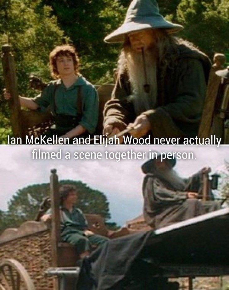 Adaptation - lan McKellen and Elijah Wood never actually filmed a scene together in person