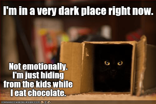 cat kids place eat chocolate caption dark hiding