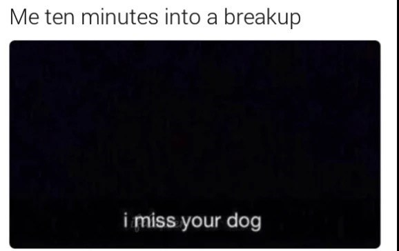 meme - Black - Me ten minutes into a breakup i miss your dog