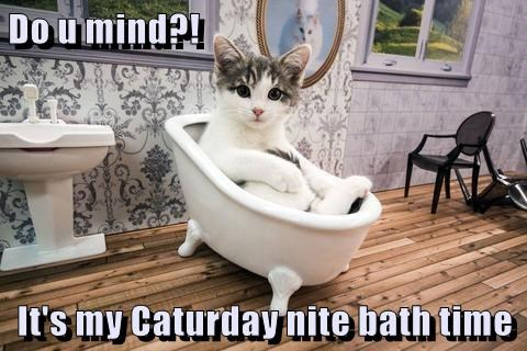Do u mind?! It's my Caturday nite bath time