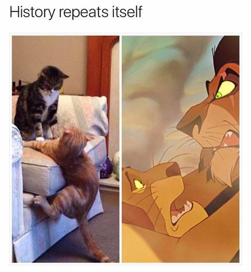 Cartoon - History repeats itself
