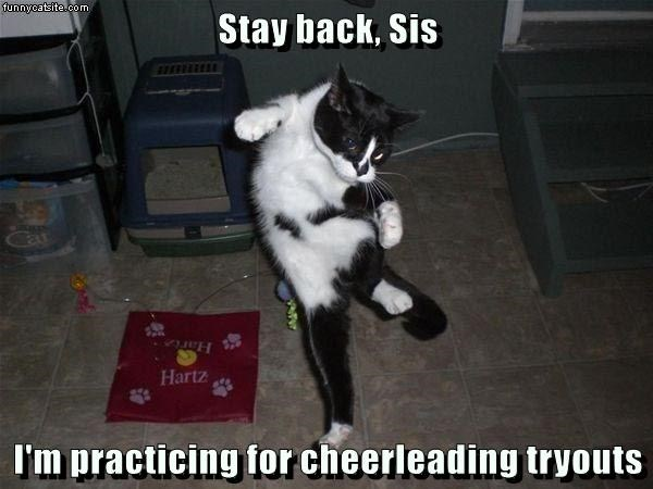 cat,tryouts,practicing,cheerleading,caption